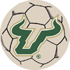 Soccer Ball Rug - Univ. of South Florida