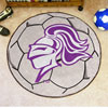 Soccer Ball Rug - College of Holy Cross
